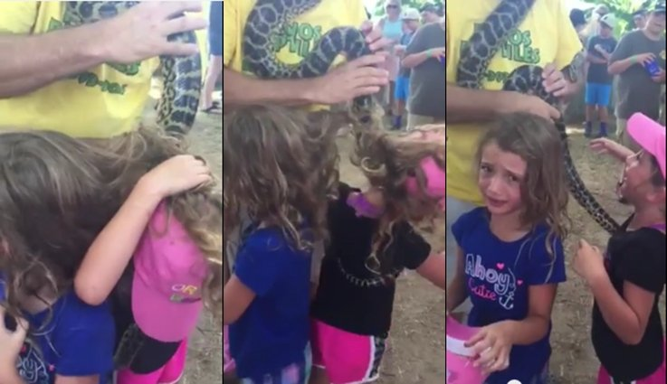 Identical Twins Get Large Snake Tangled in Hair