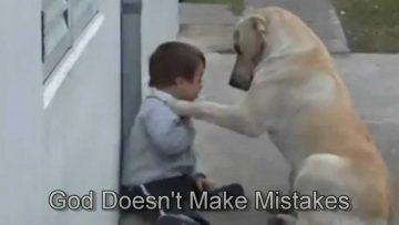 dog-boy-down-syndrome